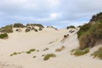 Ya un peu de sable