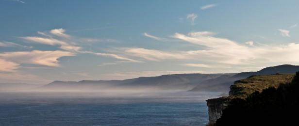 La brume sur le Royal National Parc