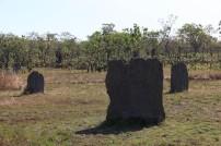 Termitières magnétiques