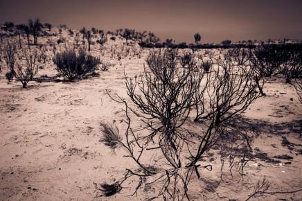 untitled shoot-7218